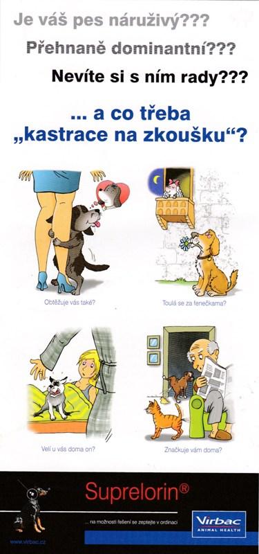 KASTRACE psů na ZKOUŠKU